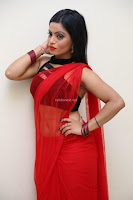 Aasma Syed in Red Saree Sleeveless Black Choli Spicy Pics ~  Exclusive Celebrities Galleries 001.jpg