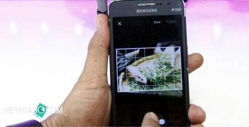 VSCO - aplikasi untuk mengedit foto