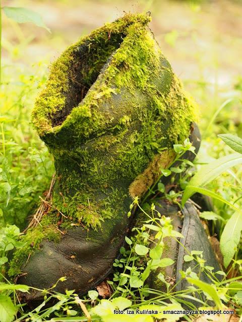 czyje buty, stare buty, las, znalezisko, przyda sie, podlasie, zapomniane