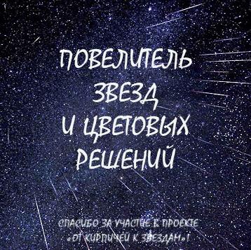"""Почетный астронавт СП """"От кирпичей к звездам"""""""