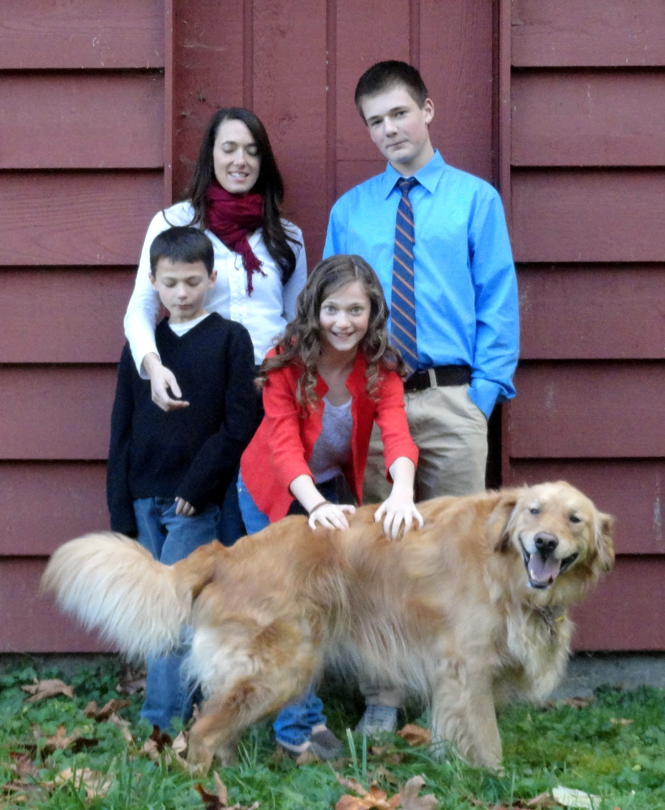 christmas pictures with dogs