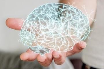 Impulsionando a Saúde do Cérebro naturalmente
