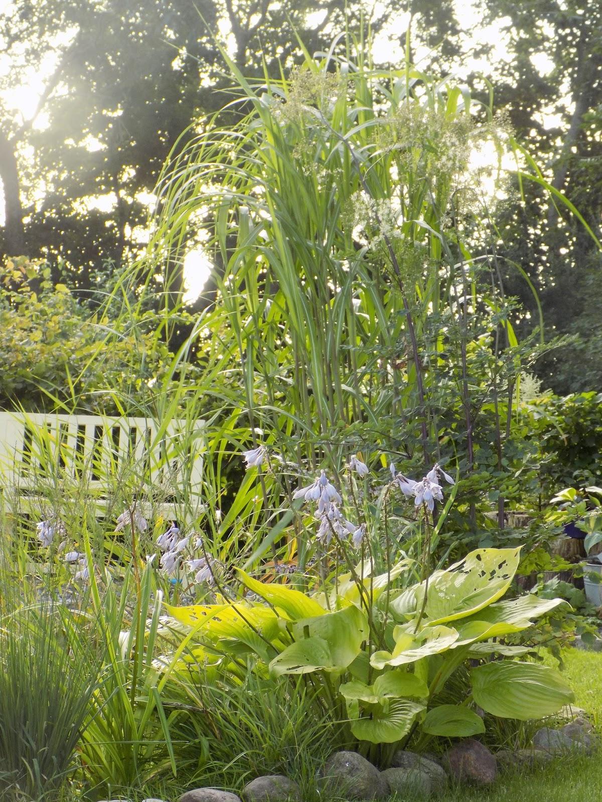 Schön Gartengestaltung Mit Steinen Und Gräsern Modern Ideen