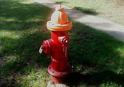 orange top fire hydrant