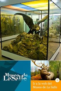 Museo de la salle