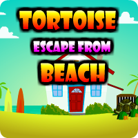 AvmGames Tortoise Escape From Beach