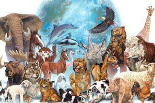 ¿Cual es el Animal de tu Signo?