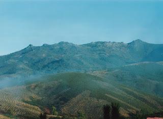 Sierra de San Mamade