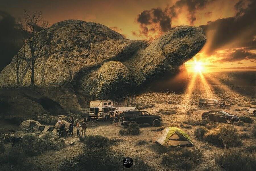 06-Tortoise-in-the-desert-Enry-www-designstack-co