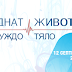 """""""Чуждо тяло"""" в """"Откраднат живот"""" от 12 септември в 20.00 ч. по NOVA"""