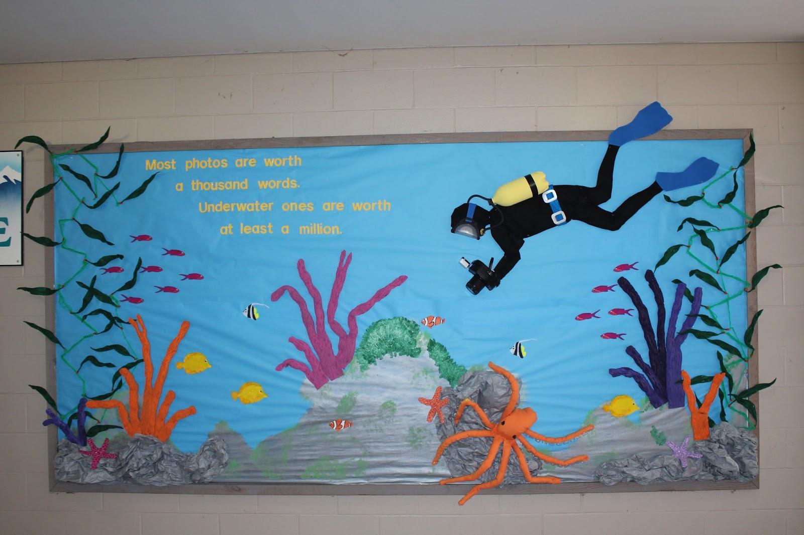 School Bulletin Boards Underwater Tropical Ocean Scuba Diver Board