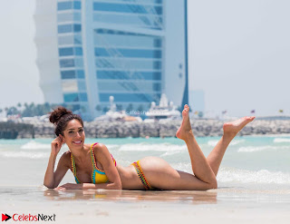 Farrah+Abraham+in+Bikini+on+a+Beach+in+Dubai+Sexy+Ass+Hot+Cleavages+May+2018++%7E+CelebsNext.xyz+Exclusive+Celebrity+Pics+007.jpg