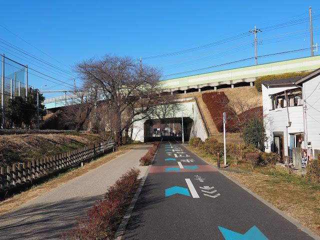多摩湖自転車道 新青梅街道