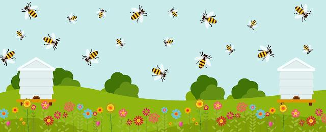 Πωλείται μεταχειρισμένος μελισσοκομικός εξοπλισμός