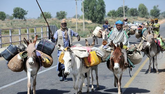 You can't sack us – Head of Fulani community