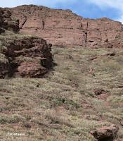 Dry hillside, Salta