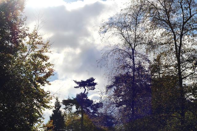 The Skimmington Castle, Reigate Heath
