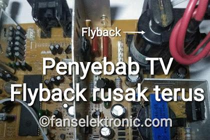 TV Cina Flyback Rusak Terus