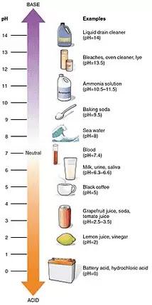 skala asam basa barang sehari-hari
