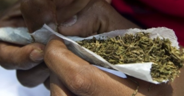 There's a booming cannabis/weed business in Lagos and no ...