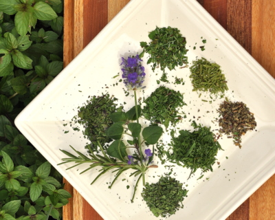 DIY Dried Herbs (How to Dry Fresh Herbs in the Microwave) ♥ AVeggieVenture.com, for herbs fresh from the garden or purchased at the grocery.
