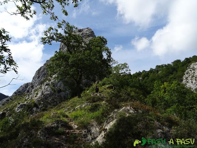 De Urdón a Tresviso: Árboles y roca