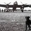 The Dambusters: Operation Chastise