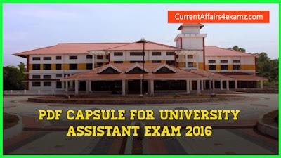 University Assistant PDF Capsule