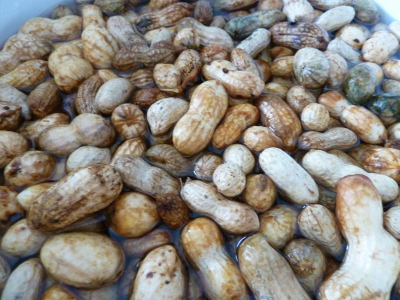 Cookin Cowgirl Cajun Boiled Peanuts
