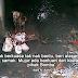 Kejam, Anjing Dirantai Dalam Longkang