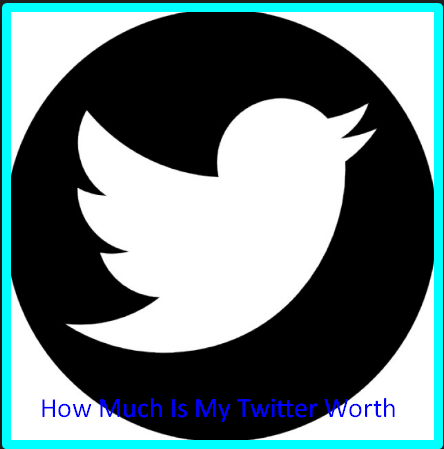 How Much Is My Twitter Worth