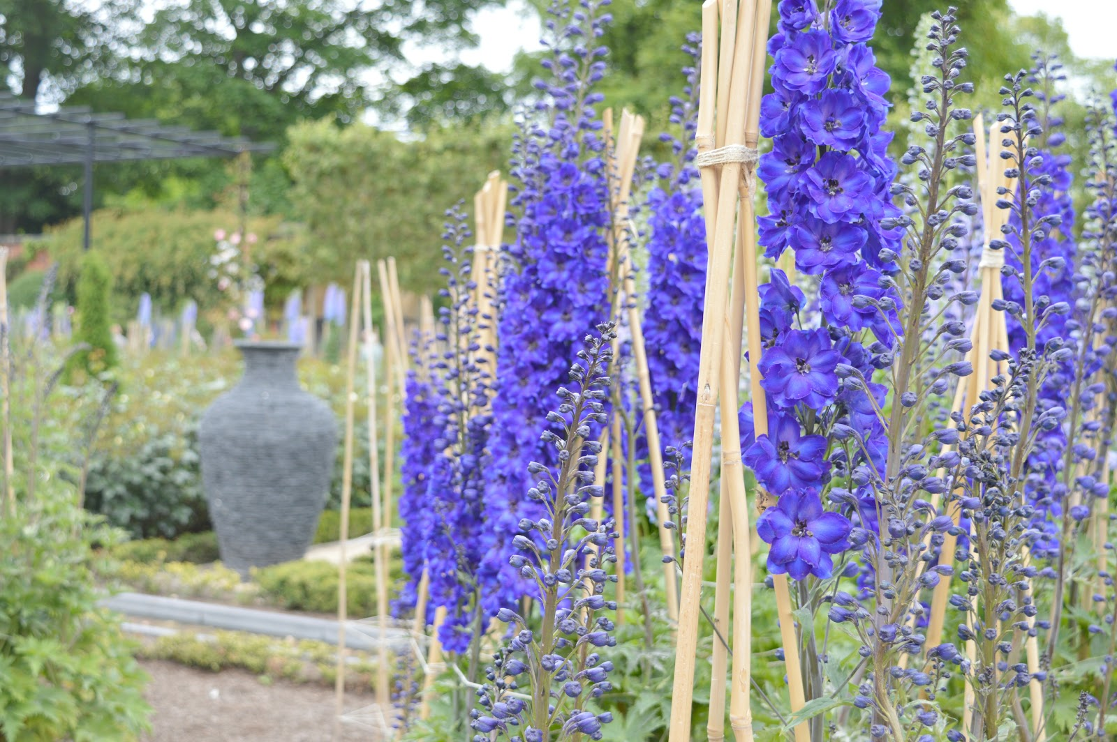 Great Northumberland - Alnwick Garden
