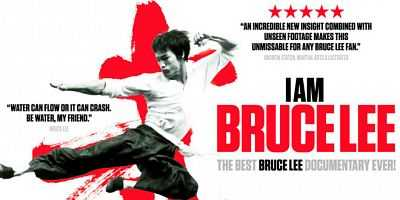 I Am Bruce Lee 2011 Dual Audio FULL MOVIE 300MB Download Hindi BluRay