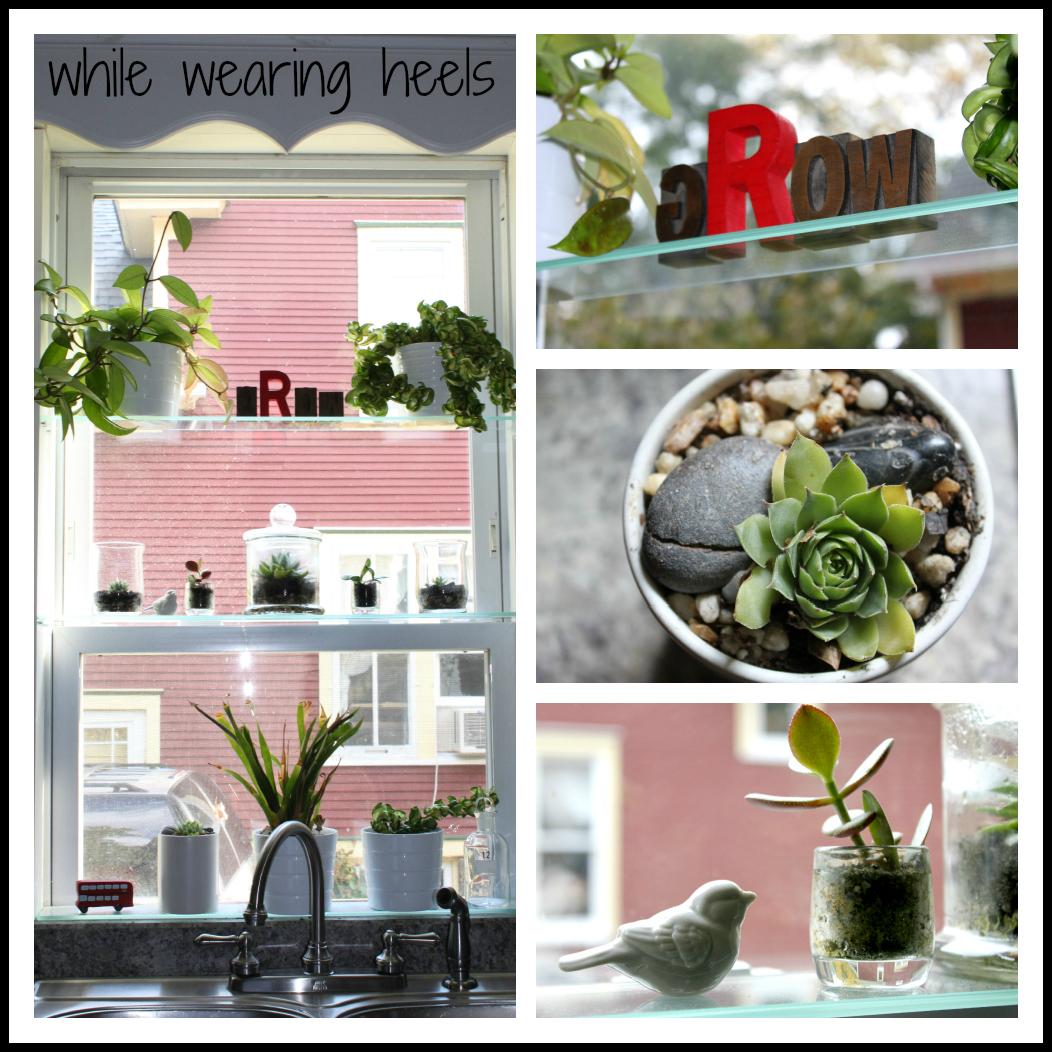 While Wearing Heels: DIY Greenhouse Window