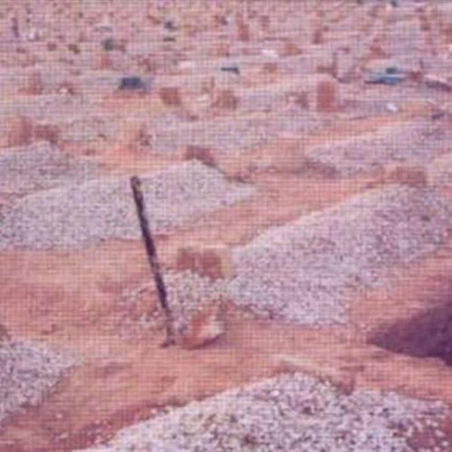شاب سعودي يفحر قبر خاله ليبحث عن آيفون 7 الذي فقده ! لن تصدق ماذا حدث له