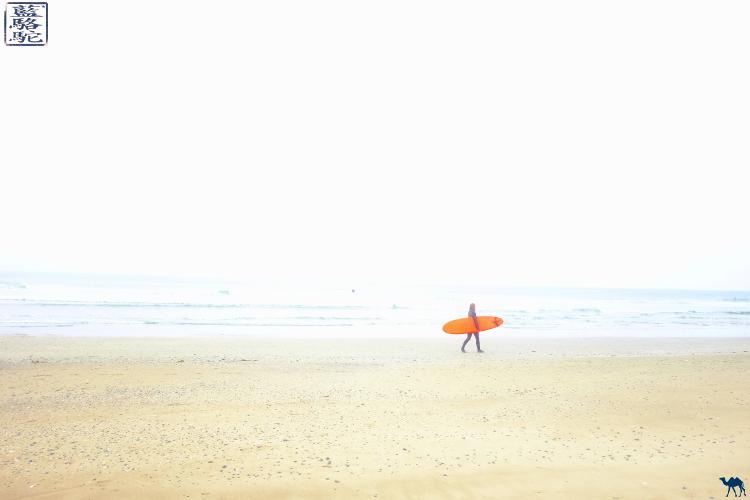 Le Chameau Bleu - Blog Voyage Tofino Canada - La surfeuse de Tofina - Colombie Britannique - Canada