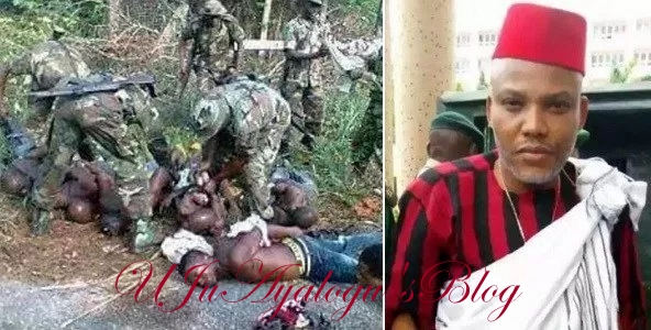 Biafra: Military Invasion of Igboland, Nnamdi Kanu is also Guilty! – by Tobenna Obiano