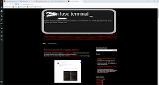 Opera navegando en https://www.enfaseterminal.com/