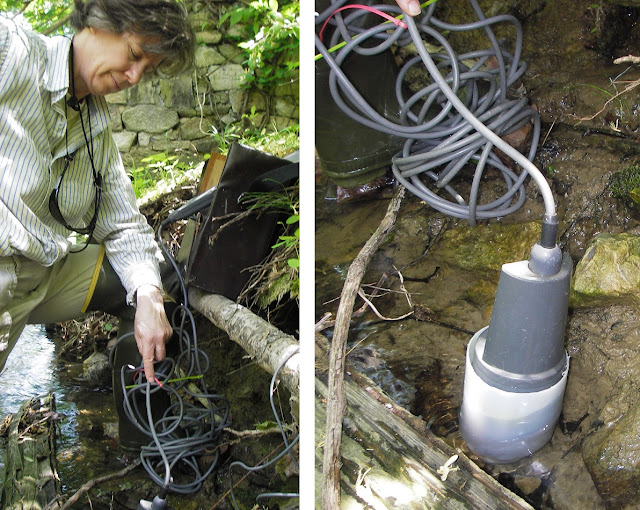 Spring water pH and temperature measurement