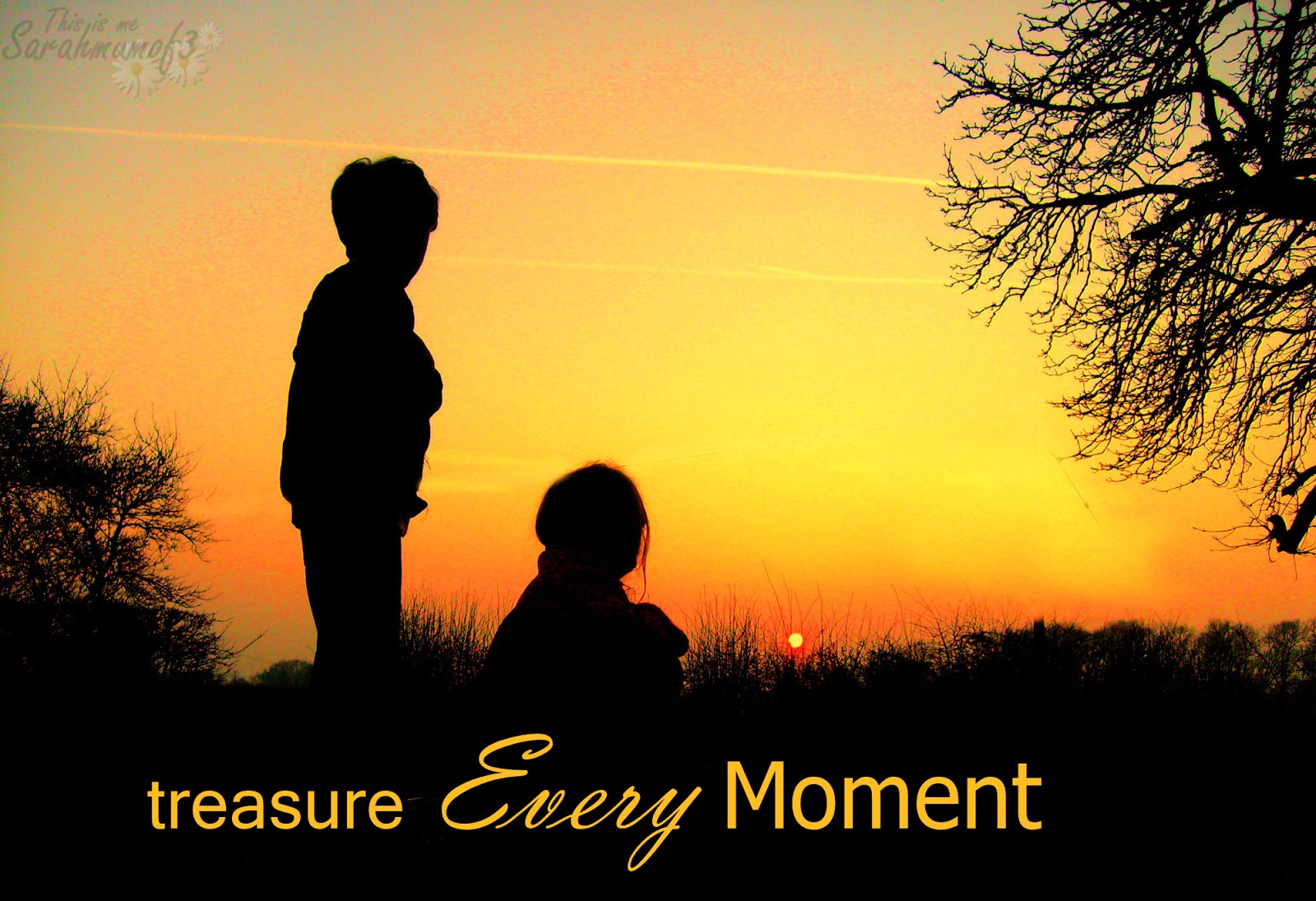 Precious Come Fly With Me Quotes: This Is Me Sarah Mum Of 3: Treasure Every Moment