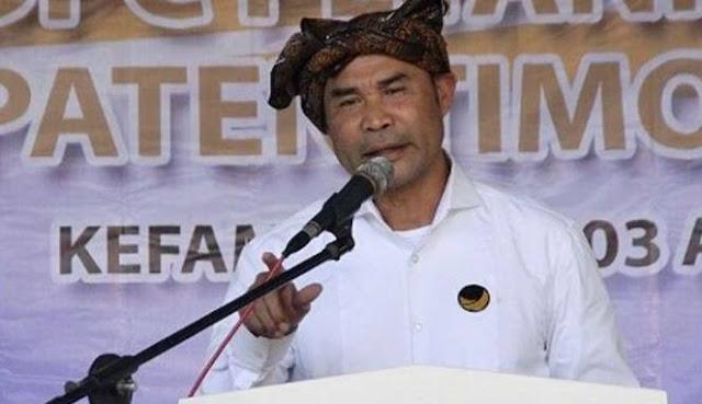 Rabu Besok NasDem Deklarasikan Viktor Laiskodat sebagai Cagub NTT