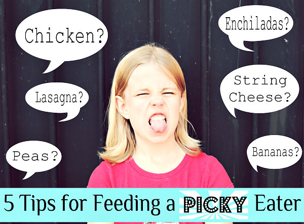 How to Feed a Picky Eater by Crafting in the Rain