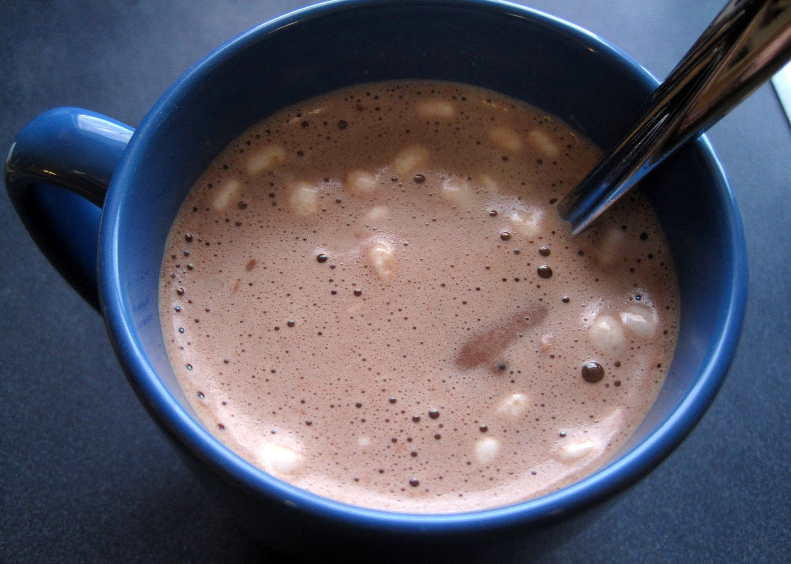 BariWise high protein diet hot cocoa chocolate with marshmallows review