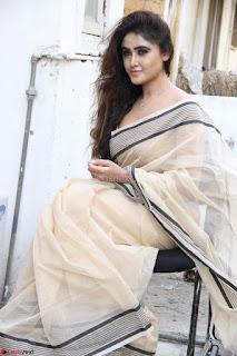 Sony Charishta in Brown saree Cute Beauty   IMG 3598 1600x1067.JPG