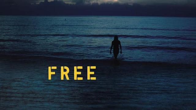 Le nouvel album d'Iggy Pop, Free, donne l'image d'un artiste accompli.