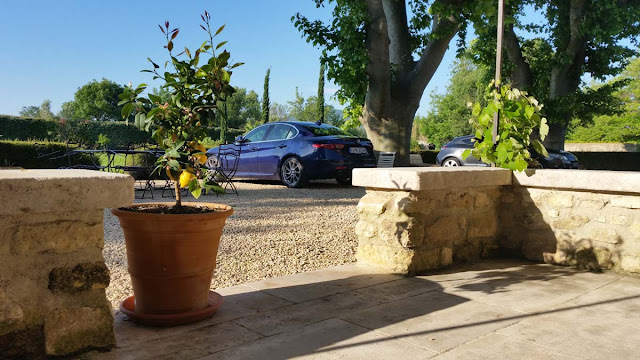 Zitronenbaum im Topf,Veranda, Kiesweg, Bäume, Alfa Romeo Giulia, Frankreich