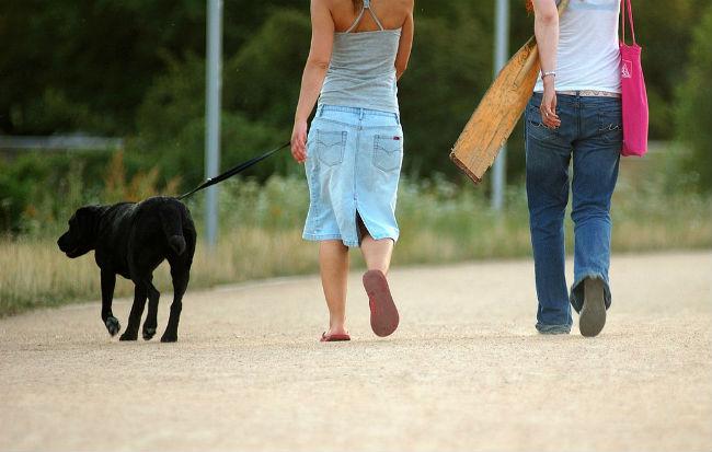 Donne che passeggiano con il cane