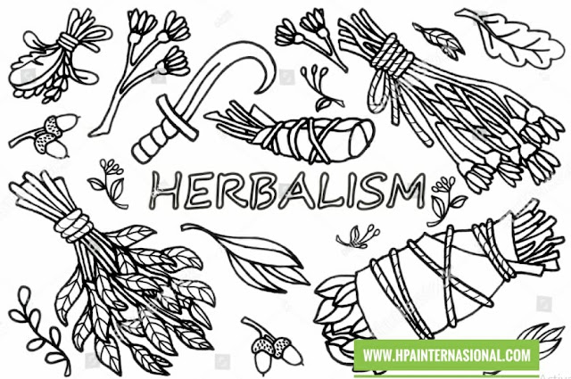 http://www.hpainternasional.com/2020/03/herbalism-hpa-international.html