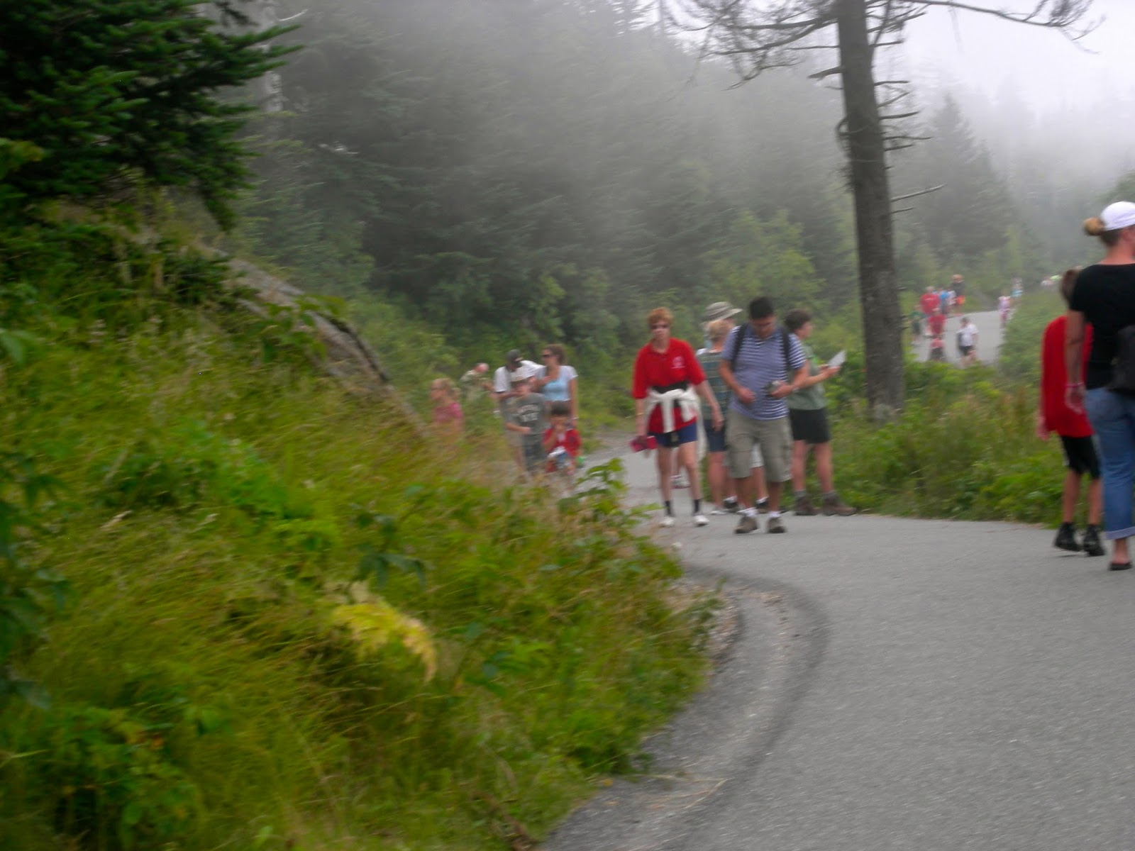 Clingman's Dome Hiking Trail - Smoky Mountains, TN