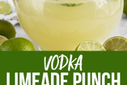 Vodka Limeade Punch is perfect for any party